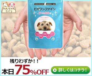 間違いだらけの小型犬用スキンケアサプリ【ビオワンファイン】選び